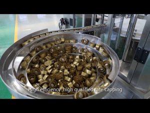 自動サーボピストンソース、蜂蜜、ジャム、高粘度液体充填ライン